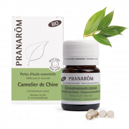 Perles d'huile essentielle Cannelier de Chine Bio