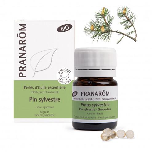 Perles d'huile essentielle Pin Sylvestre Bio
