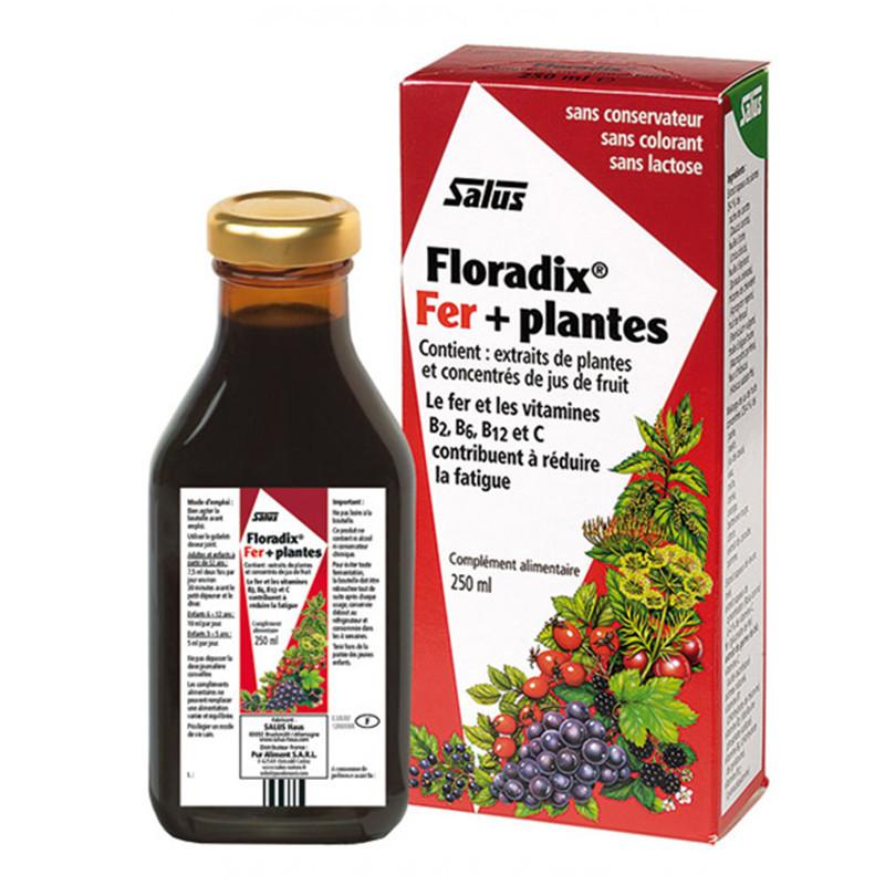 Floradix Fer+Plantes solution buvable